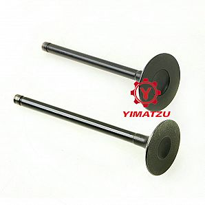 Hisun ATV UTV Parts Engine Valve for HS700ATV HS700UTV