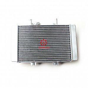 ATVs Parts Radiator Assembly for BUYANG FA-D300 H300 Quad Bike